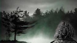 En ces bois profonds : L'horreur au fond de la