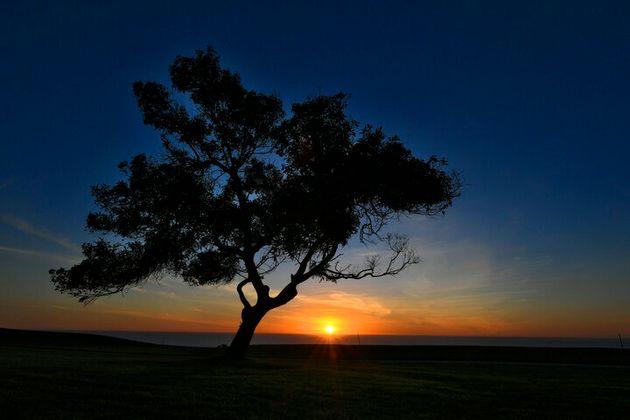 La pintoresca pista de golf de Torrey Pines, en La Jolla,