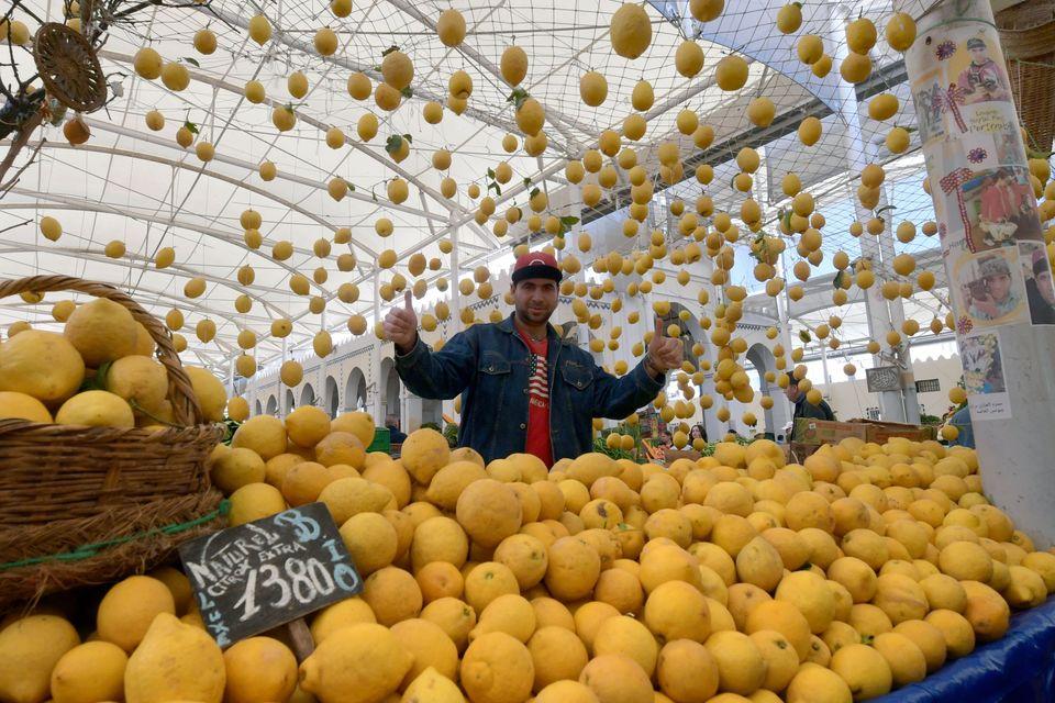 Tunisie - Un vendeur de fruits dans un marché à Tunis, au deuxième jour du mois...