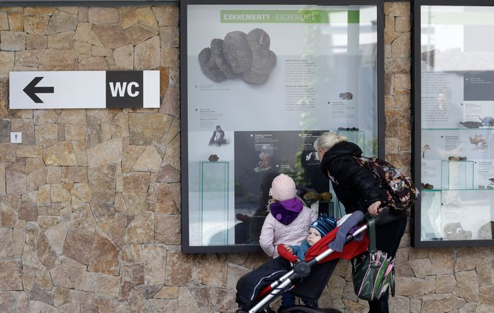 Prague Zoo has created a new permanent exhibit on the world of animal excrement. It displays information and samples of every