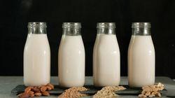 Leite de aveia e outros de origem vegetal são realmente melhores que o leite de