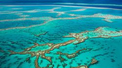 Australia's Environmental Leadership Needed Now More Than