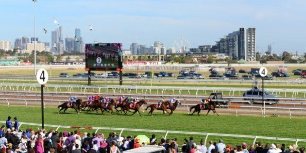 Last race of the day.This picture was taken upstairs at the Myer marquee which is a free viewing platform.I...