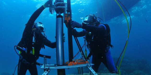 Scientists from AIMS (Australian Institute of Marine Science) taking core samples from brain corals on...