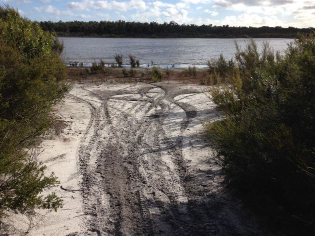 Track marks near Mt Lindesay, caused by illegal vehicle