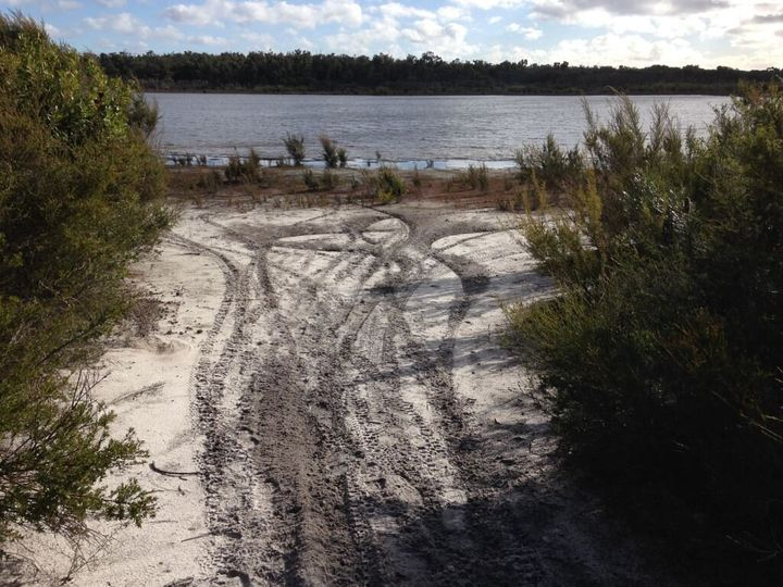 Track marks near Mt Lindesay, caused by illegal vehicle use.