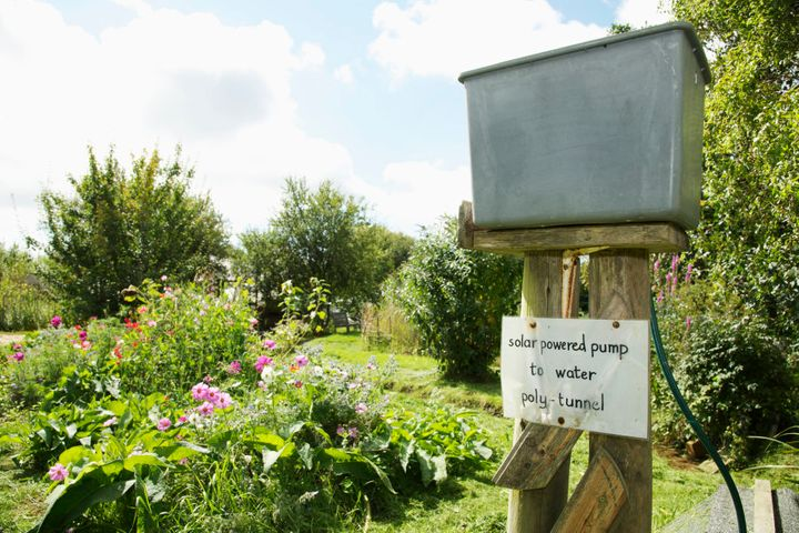 Permaculture is the development of sustainable and self-sufficient agricultural ecosystems.