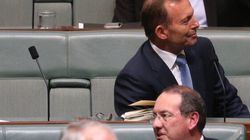 The Backbenchers: Abbott And Co Adjust To Life In The