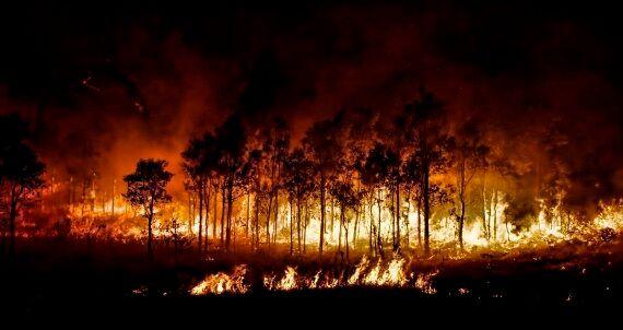 Severe Summer Bushfire Season