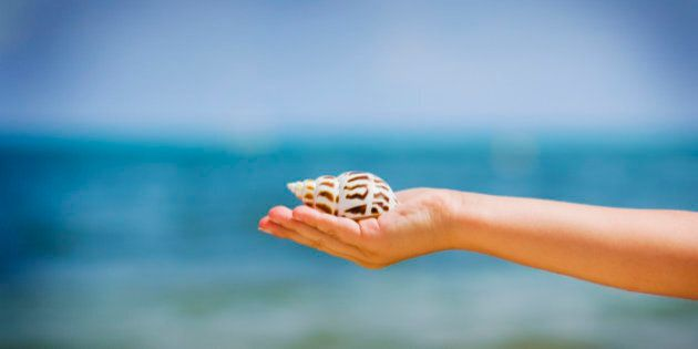 Child holding a shell