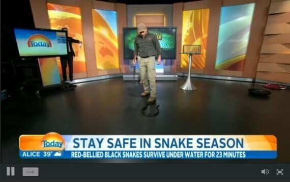 Karl Stefanovic Is Petrified Of Snakes, Freaks Out On Today