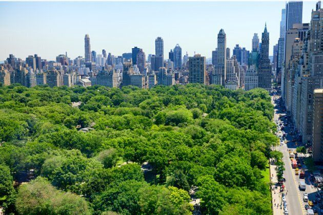 Did we mention Central Park?