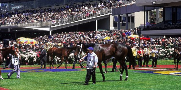 Horses in mounting yard, Hill Stand in b/g, Melbourne Cup Carnival, Melbourne, Victoria,