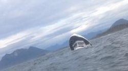 Whale-Watching Ship's 'High Centre Of Gravity' Prompted Accident, Australian