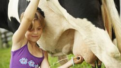 'Ditch Dairy' Campaign 'Irresponsible', Says