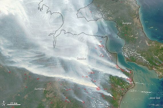 Indonesian Forest Fires Have Been Burning Since