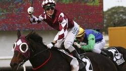 Young Australian Jockey Dies After Singapore Balcony