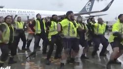 Air New Zealand Did The Haka For The All Blacks And It Was