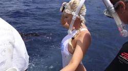 US Porn Star 'Bitten By Lemon Shark' In Shocking Florida Video