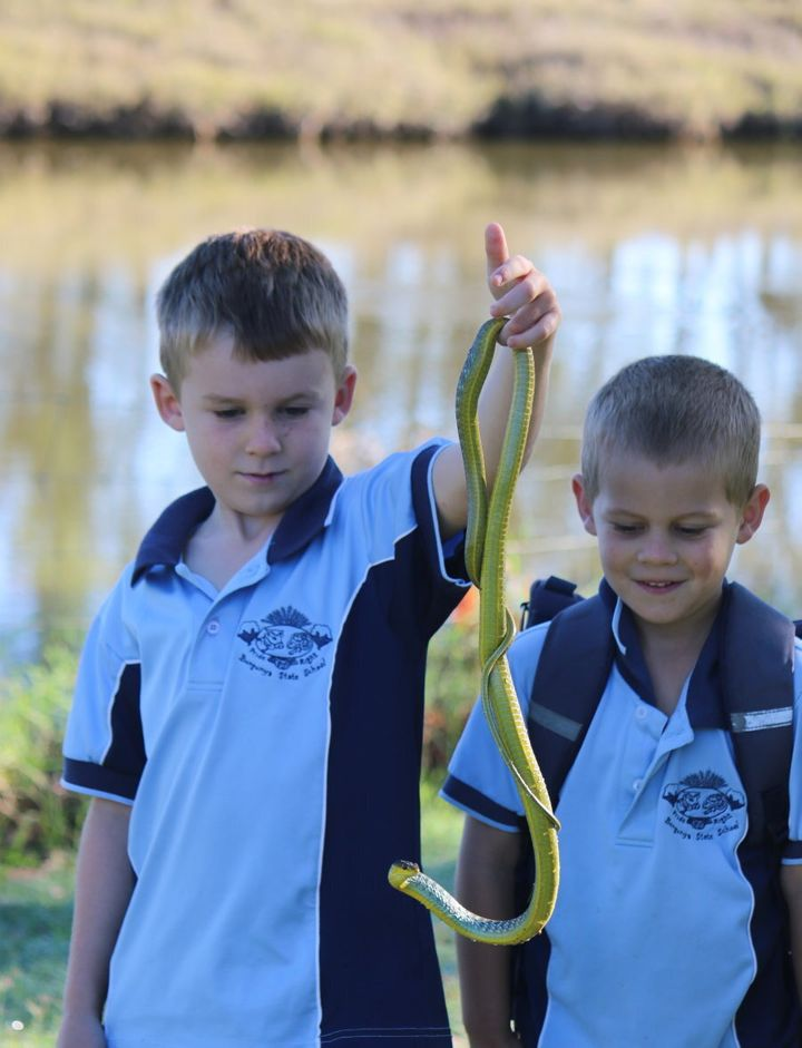 When Edward and Finn saw a green tree snake on the way to art class, they stopped to admire it.