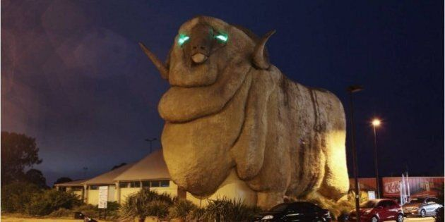 Goulburn's Big Merino Is Now