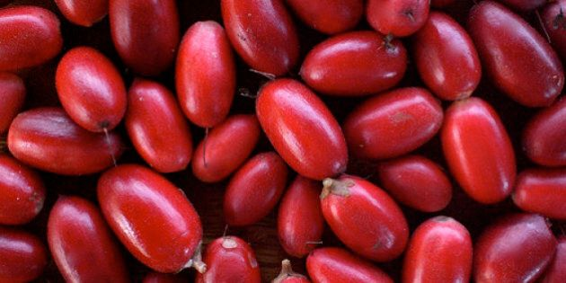 Miracle Berries Are Nature's Answer To Everlasting