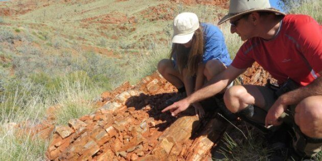 Tara Djokic and Professor Martin Van Kranendonk found the fossils in the Dresser Formation in the Pilbara...