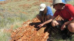 Oldest Evidence Of Life On Land Found In Australian