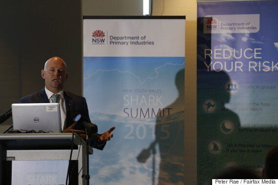Ballina Shark Attack Prompts Eco Barrier Nets