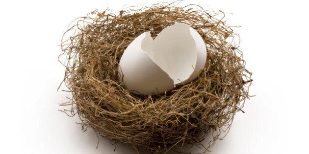 Empty egg shells left in the nest. Concept of broken nest egg or broken personal