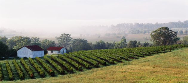 The Hunter Valley in NSW is home to Mount Pleasant, which won winery of the