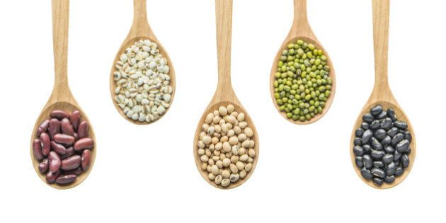grain products include black bean, Mung Bean, Soy bean, Job's Tear and Kidney
