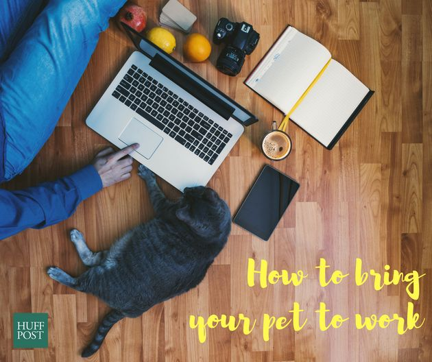 How A Day At The Office Can Benefit Your