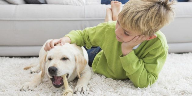 Cute little boy with his puppy at home in the living