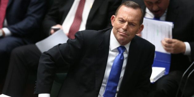 Abbott Government Hit By More Cabinet