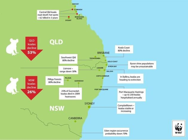 An overview of the state of the koala populations in New South Wales and