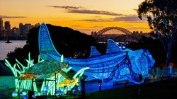 Planning On Going To Vivid? Here's What You Should