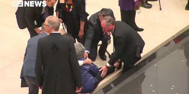 Barnaby Joyce Jumps In A Fountain To Help Elderly