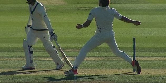 Australia New Zealand 1st Test: Usman Khawaja Takes Brilliant Catch As New Zealand All Out For