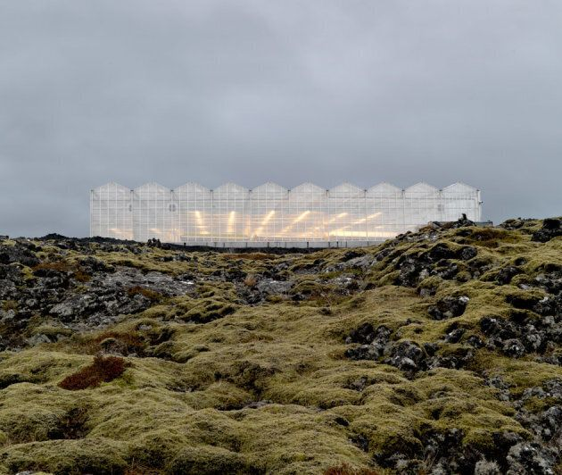 The greenhouse in Iceland is ecologically-engineered. It creates no carbon emissions and uses natural geothermal energy and underground glacial water.