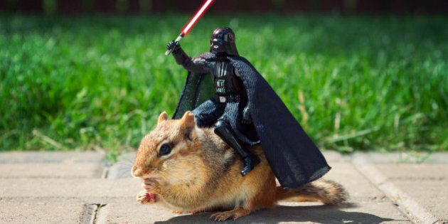 BATHURST, CANADA - JUNE 16: *** EXCLUSIVE *** In this illustration,Sith Beast. Unable to get his starship...