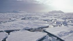 'Largest-ever' Plane Touches Down At Australian Antarctica