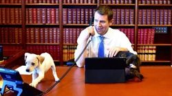 Mike Baird's Office Has Many Cute Puppies And Leather-Bound