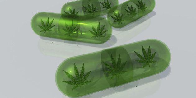 Marijuana leaf in