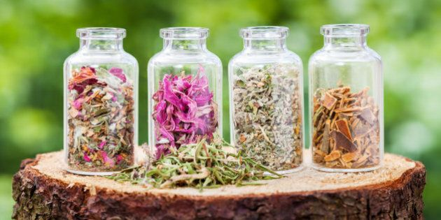 Glass bottles with healing herbs on wooden stump on green background, herbal