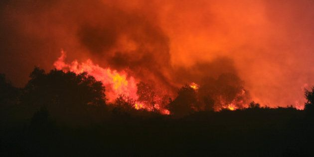 Photo taken on August 31, 2010 shows a forest fire which has already destroyed 2.600 hectares near the French southern city of Assas.  AFP PHOTO / PASCAL GUYOT (Photo credit should read PASCAL GUYOT/AFP/Getty Images)