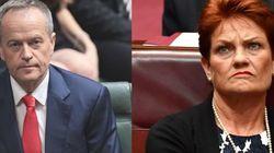 Politicians Slam Pauline Hanson's Anti-Islam Policy