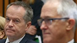 The Unpopular Alternative PM, Shorten Seeks Poll