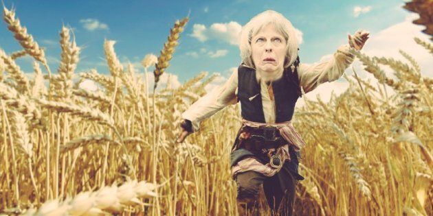 Image result for theresa may fields of wheat