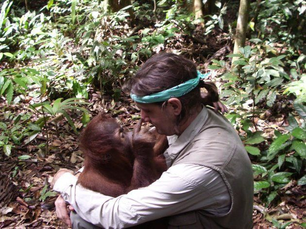 Humans and orangutans can form very special